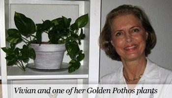 Vivian and her Golden Pothos plant