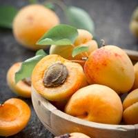 apricot-osteoporosis