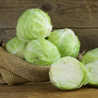cabbage-osteoporosis
