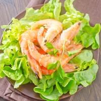 krill-bone-health